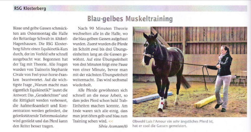 """Artikel in der """"Bayerns Pferde"""""""